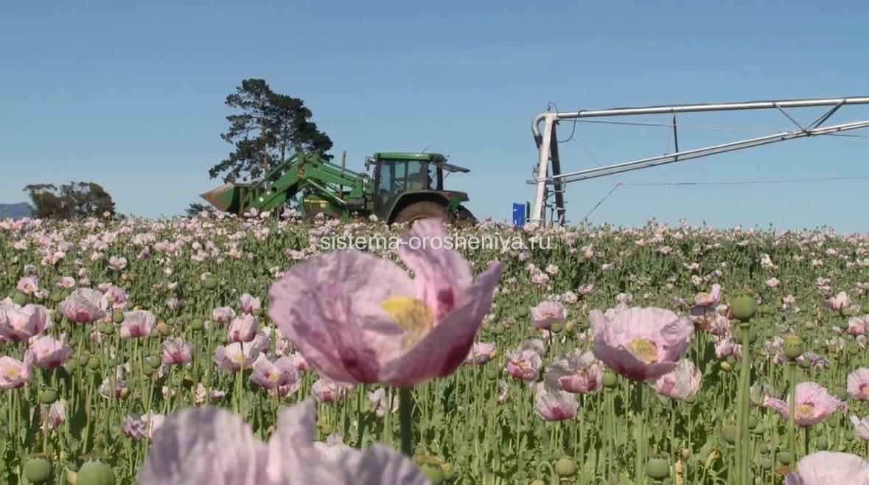 Орошение полей буксируемой дождевальной машиной