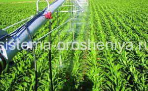 Управление орошением при выращивании кукурузы