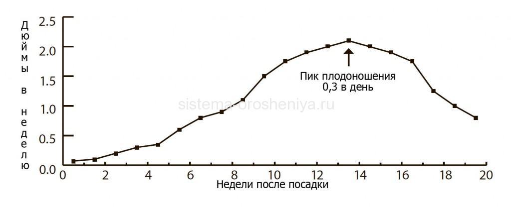 График водного потребления арахисовых культур