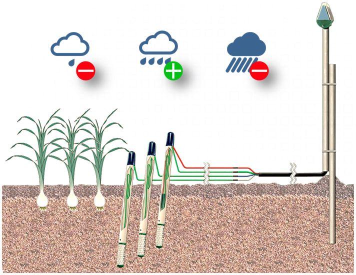 Контроль влажности почвы