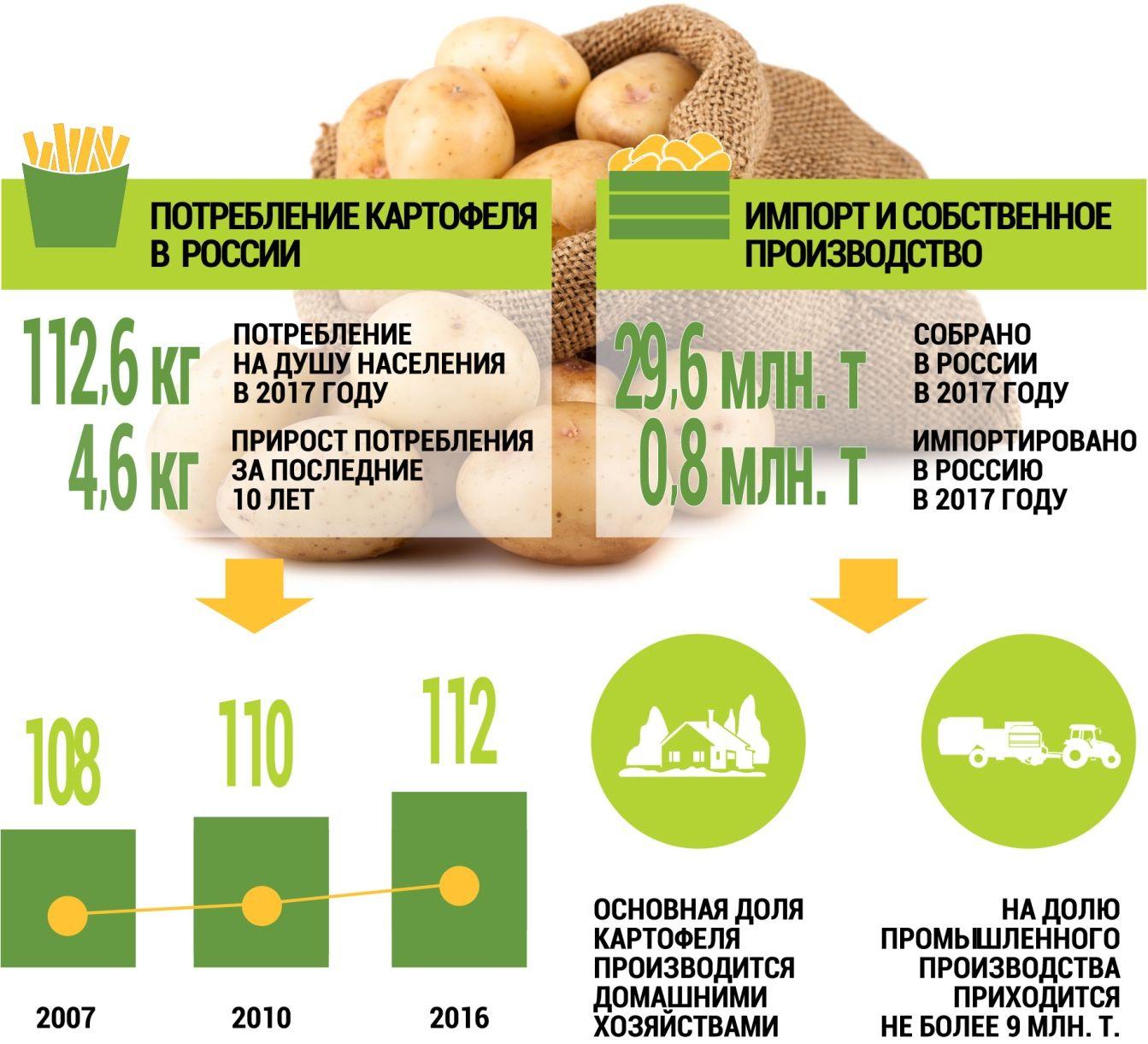 Таблица потребления и импорта картофеля в России